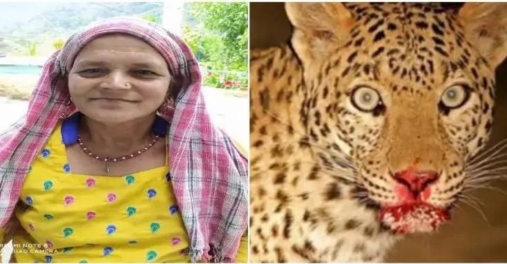 उत्तराखंड: डबरा गांव में गुलदार ने बनाया खेत में काम कर रही महिला को शिकार, दर्दनाक मौत