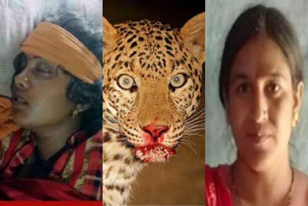 उत्तराखंड: महिला को जबड़े से खींच कर ले गया गुलदार,ननद ने बिना डरे ऐसे बचाई भाभी की जान
